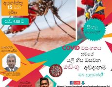 Facebook live session to discuss Dengue during the COVID-19 pandemic